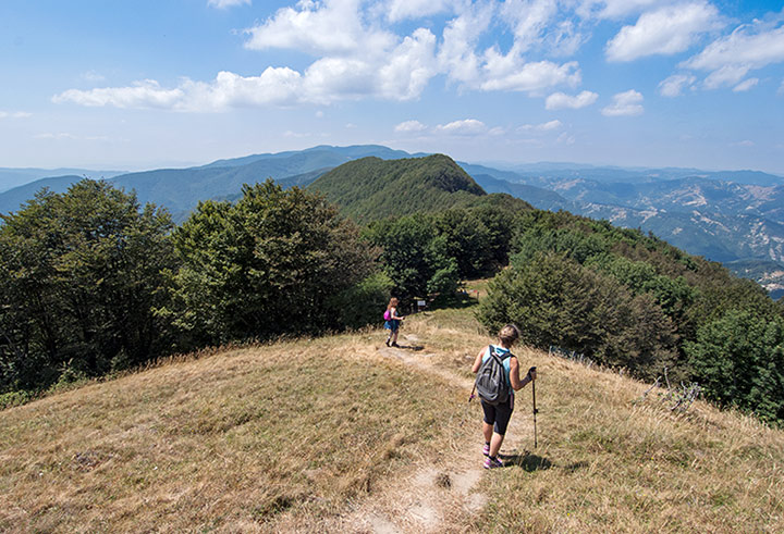 Itinerari Foreste Casentinesi